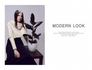Modern Look (6)